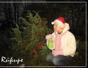 """Ziemupē tiks atklāts rūķu ciematiņš """"Rūķupe"""""""